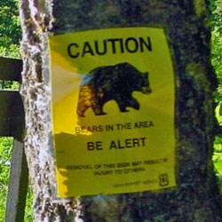 Bear danger sign in Alaska