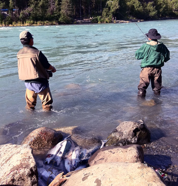 Fishing for sockeye salmon at Bing's Landing on Alaska's Kenai River