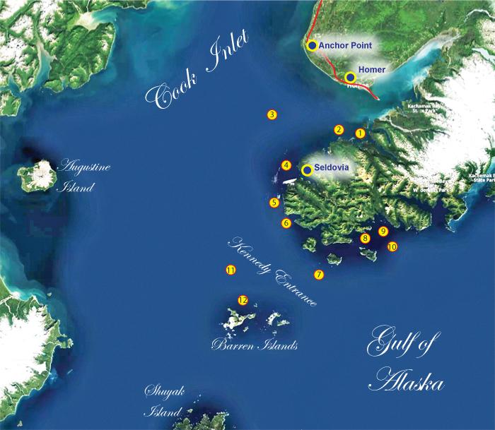 Alaska Fishing Seldovia Saltwater Fishery Alaska Outdoors Supersite