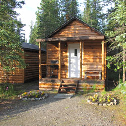 Cabin near Denali National Park
