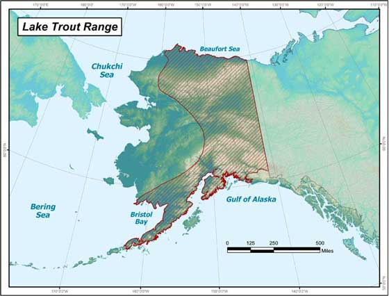ADF&G map showing lake trout distribution in Alaska