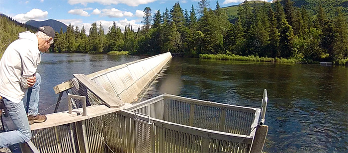 Salmon counting weir on Alaska's Russian River
