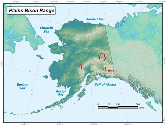 Plains bison range in Alaska