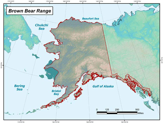 ADFG Brown Bear Range Map
