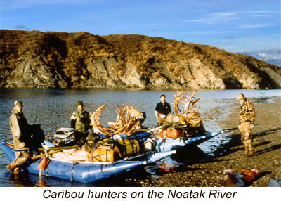 Caribou hunting in alaska alaska outdoors supersite planning a caribou hunt in the western arctic involves consideration of the logistics of getting to the arctic currently alaska airlines is the only sciox Choice Image