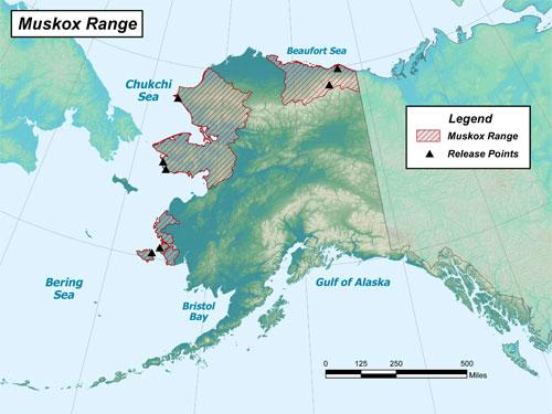 Hunting In Alaska - Alaska Outdoors Supersite