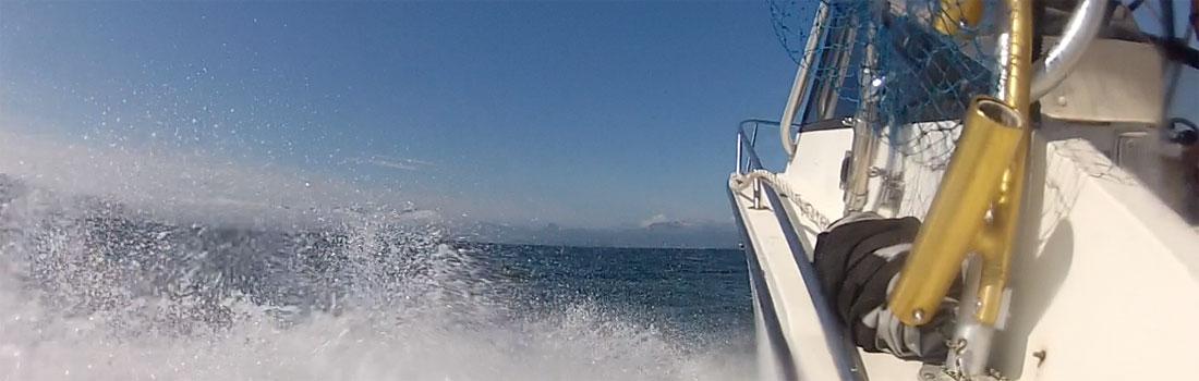 boating4.jpg