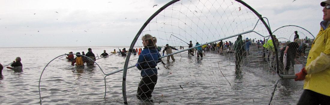 fishing5.jpg