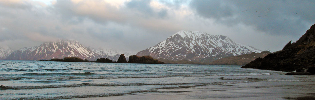 The Alaska Peninsula & The Aleutians