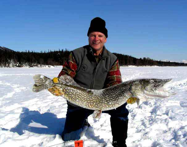 large northern caught through the ice